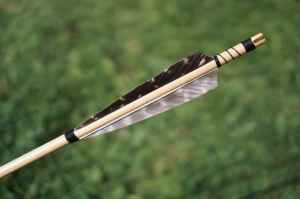 arrow feather stock selective focus